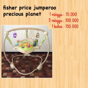 Fisher Price Jumperoo Precious Planet